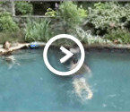 Video - Our customers share their Endless Pool experiences